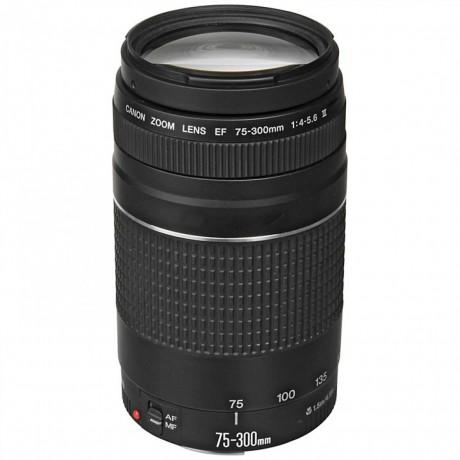 canon-ef-75-300mm-f4-56-iii-lens-big-0